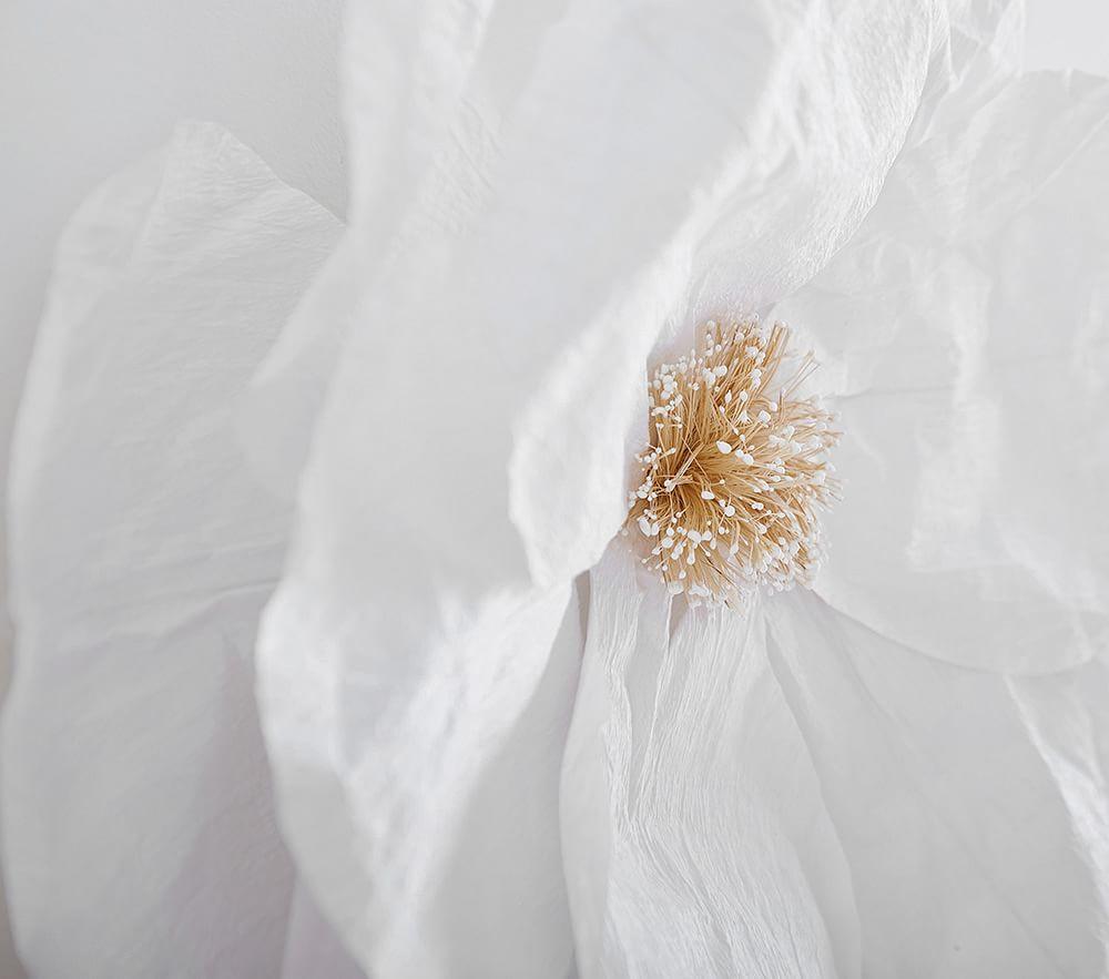 Jumbo Crepe White Paper Flowers Set of 2