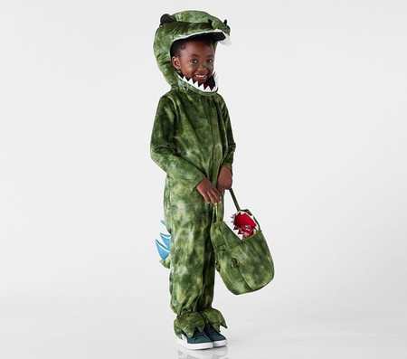 Light Up T-Rex Costume