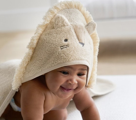 Lion Hooded Nursery Wrap & Wash Cloth