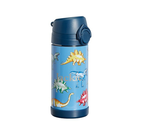 Mackenzie Blue Multicolor Dino Water Bottles & Food Storage